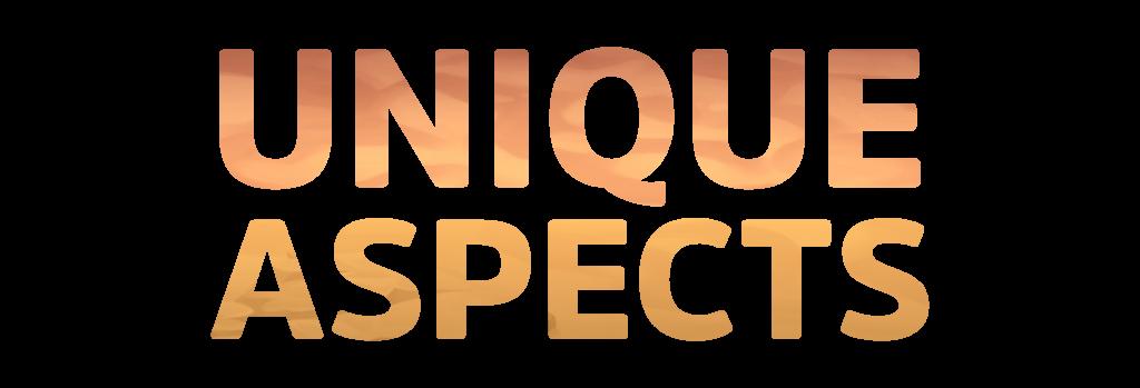 Unique Aspects